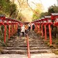 Photos: 貴船神社