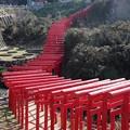 Photos: 元乃隅神社