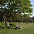 遠州灘海浜公園
