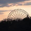 Moricoro Park