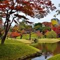 写真: 小石川後楽園にて