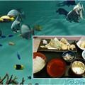 写真: 天ぷら定食