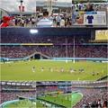 Photos: ラグビー ワールドカップ