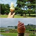 Photos: ソフトクリームの共演