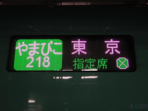 IMGP4213