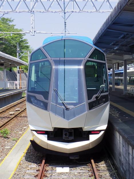 IMGP5916 (2)