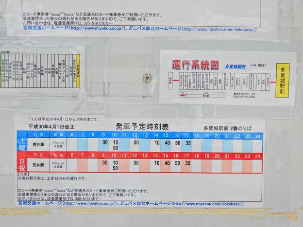 DSCN2665