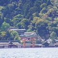 厳島神社/広島