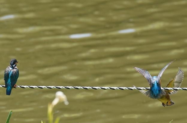 ロープぎわの攻防