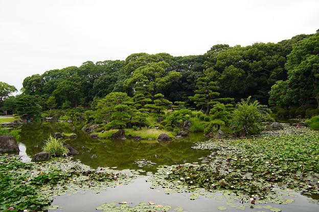 慶沢園(大阪天王寺公園)
