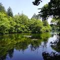 Photos: 雲場池◇軽井沢