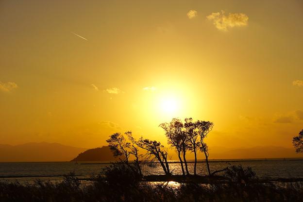 夕陽 湖北(奥琵琶湖)