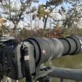 Photos: 500mm