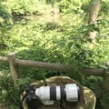 カメラ  大阪/長居