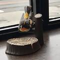 Photos: 窓辺の鳥さん