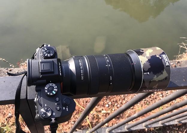 Photos: カメラ小僧