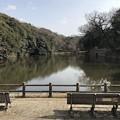 Photos: 明石城桜堀