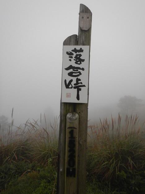 Photos: DSCN9485