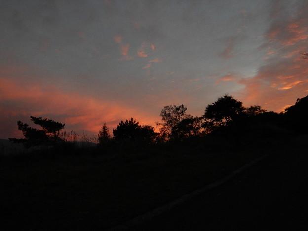 Photos: DSCN9482