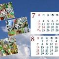 Photos: ワサビ菓子(他)カレンダー2016-7、8