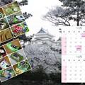 Photos: ワサビ菓子(他)カレンダー2016-11、12