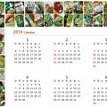 写真: ワサビ菓子(他)カレンダー2019 前半