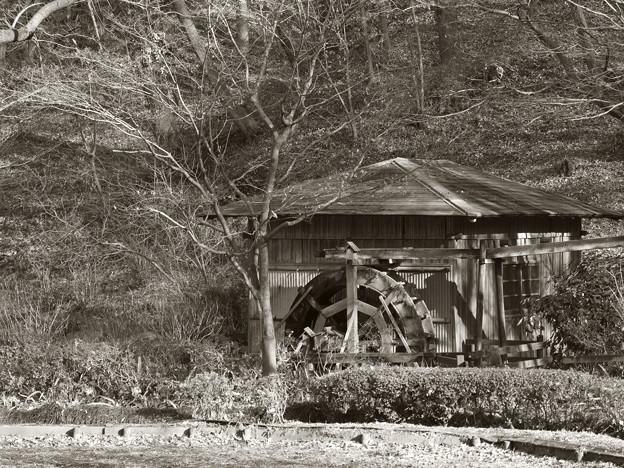 薬師池の水車