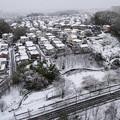 東京の田舎は明日が心配・・・