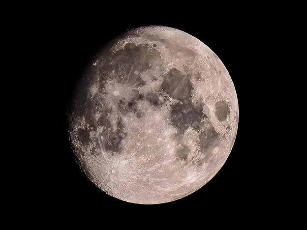 久しぶりに月を見た気がします!!