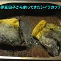 写真: DSCF0592
