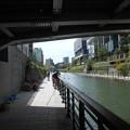 写真: スカイツリーの橋下で