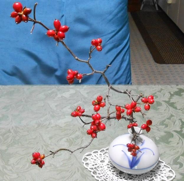 一枝仏壇へ飾りました