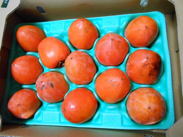 枯露柿用百目柿
