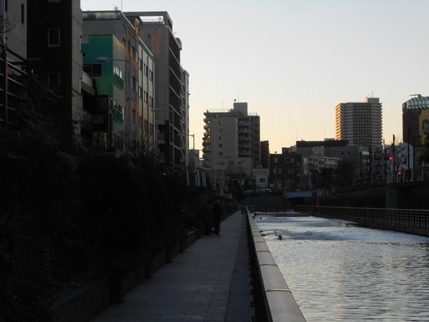 北十間川が日が暮れていく