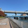 運河に架かる橋が凄い数なんですね。
