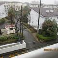 初雪が降ってきた