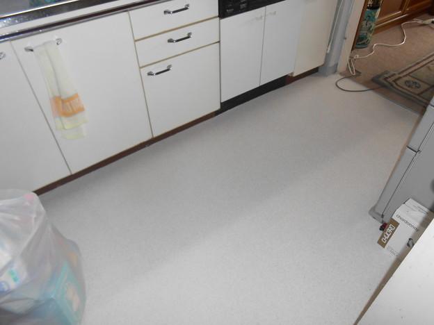 Photos: 冷蔵庫と電子レンジは移動せずに済んだ