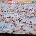 Photos: ハマグリの身投げ??