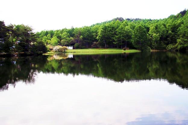 水鏡の千代田湖