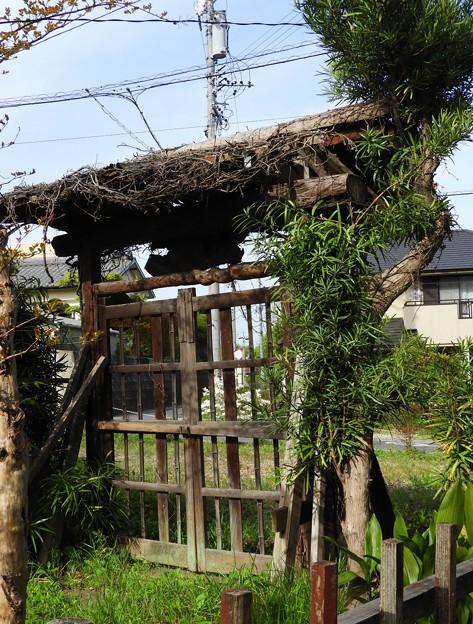 写真: 空き家の門~♪
