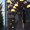 写真: 桜橋の街灯~♪