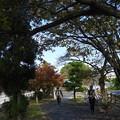 桑名宿周辺~♪