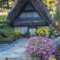 日本の原風景~♪