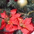 クリスマスの飾り~♪