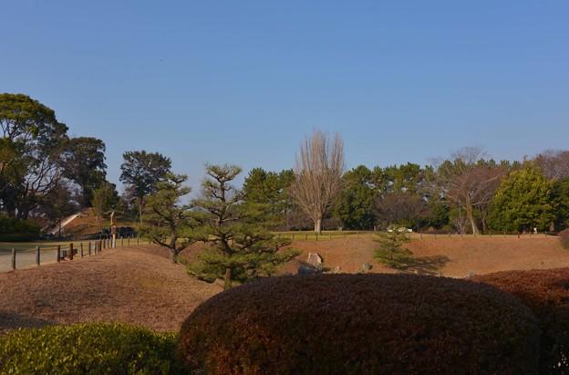 冬の名古屋城 庭園~♪