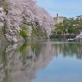 彦根城 お堀周り散策~♪