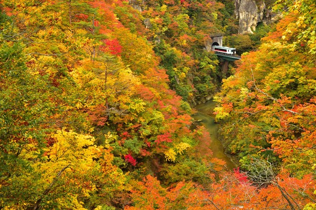 秋の鳴子峡2
