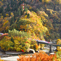 Photos: 紅葉の山 秋田新幹線