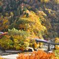 紅葉の山 秋田新幹線