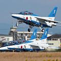 Photos: 浜松_IMG_8463_l